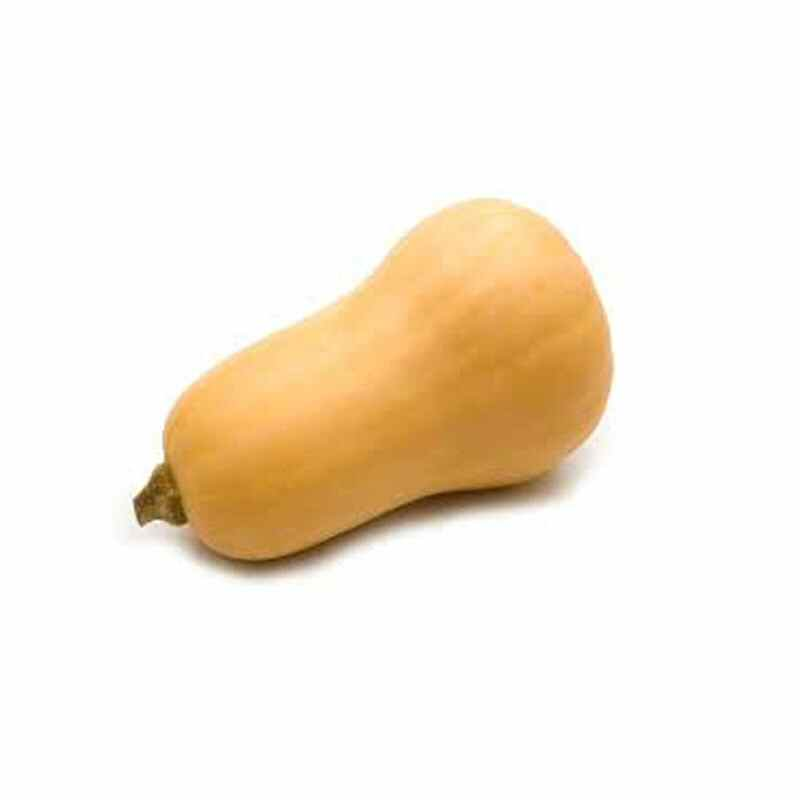 Butternut Squash  £3.50/ kg  medium