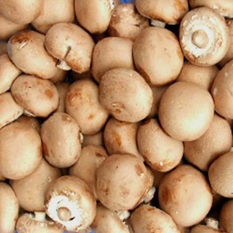 Mushrooms Chestnut 500g