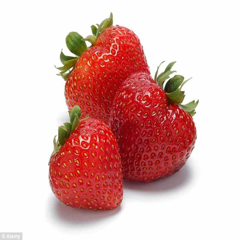 Strawberries Cardboard punnet  UK 250g Spain