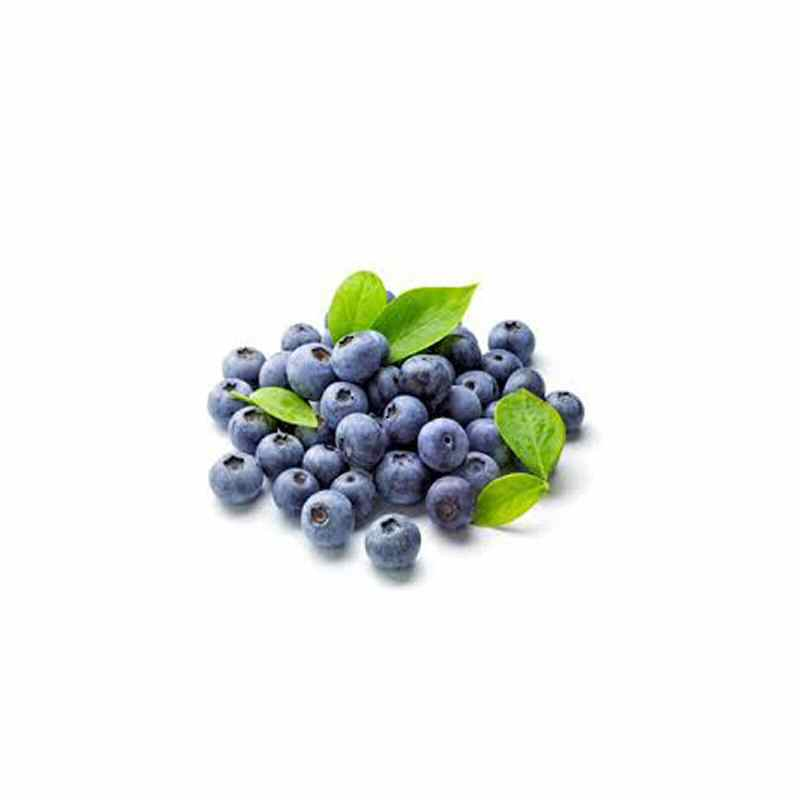 Blueberry Punnet  125g cardboard box
